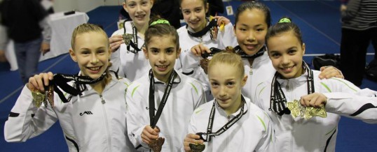 Dynamo gymnasts own the podium in Oshawa qualifier